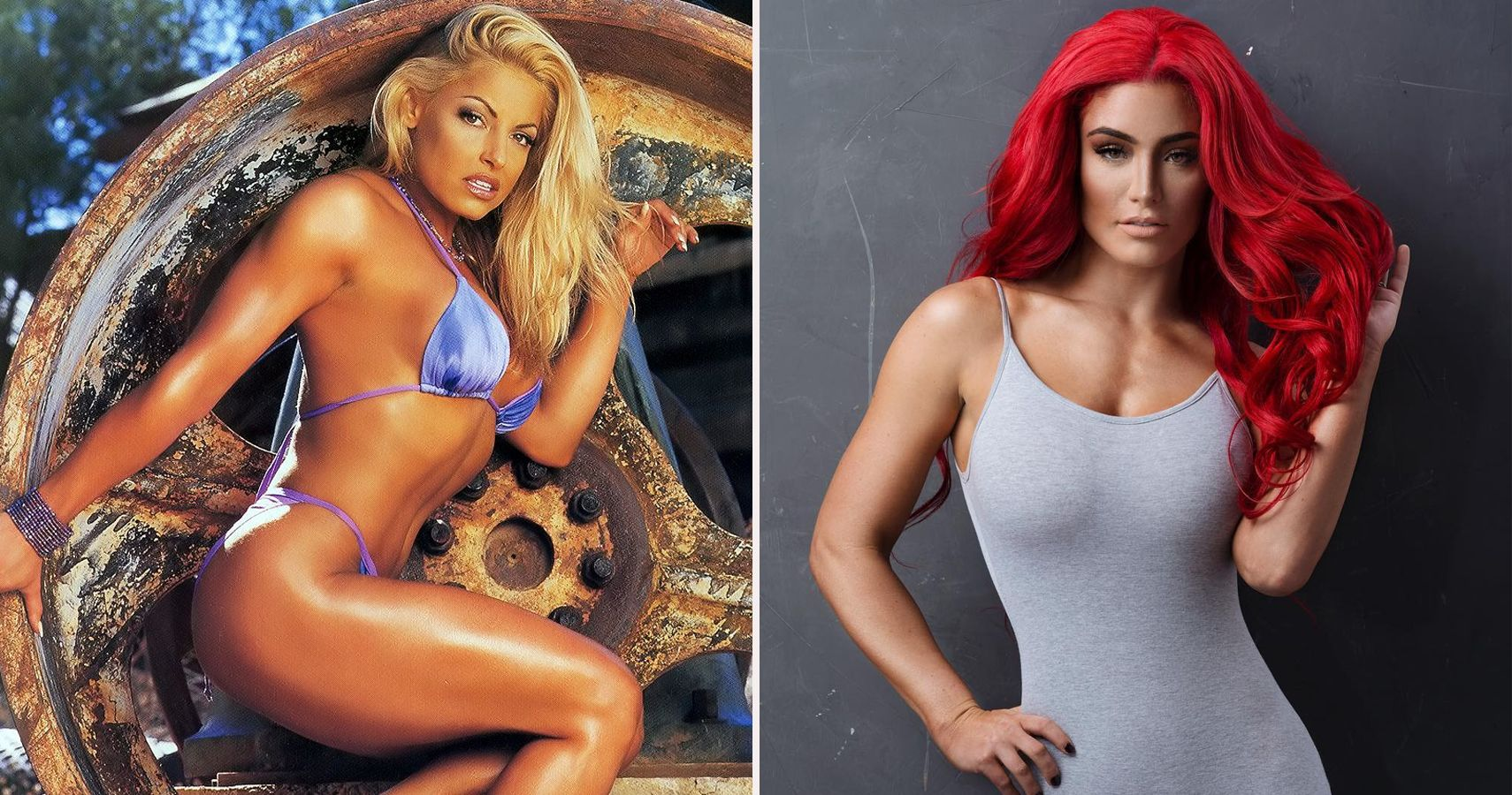 8 Current and 7 Former WWE Divas We Wish Would Bare It All