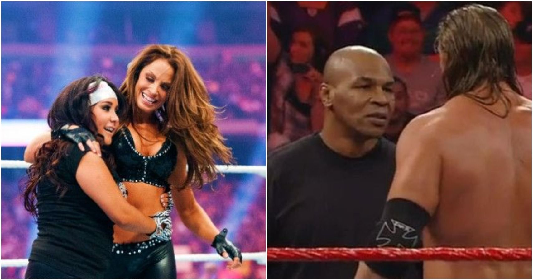 10 Wrestlers You Forgot Teamed With Celebrities | TheSportster