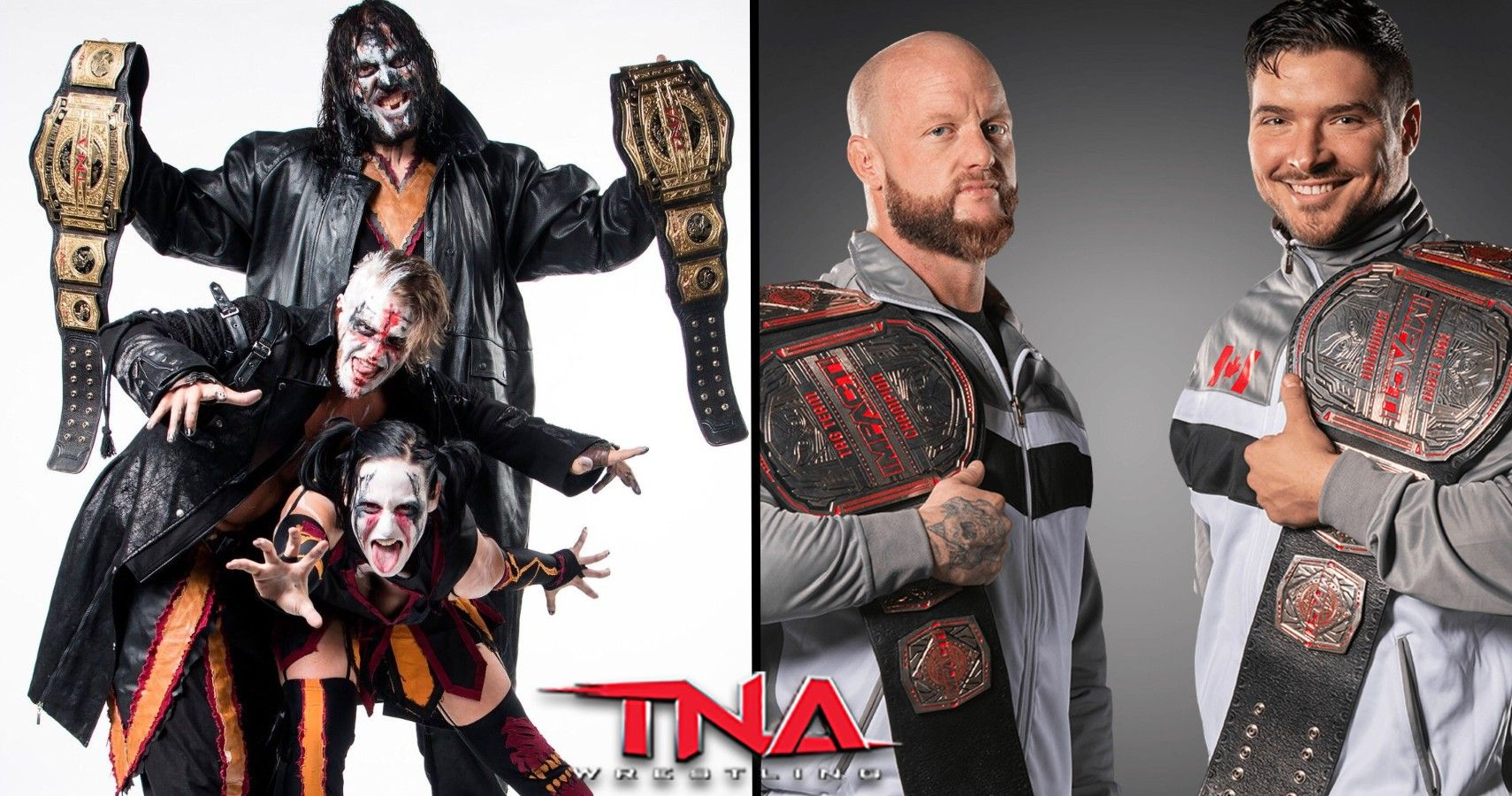 TNA's 10 Longest Reigning Tag Team Champions   TheSportster